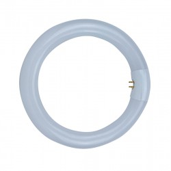 LAMPE CIRCLINE 22W