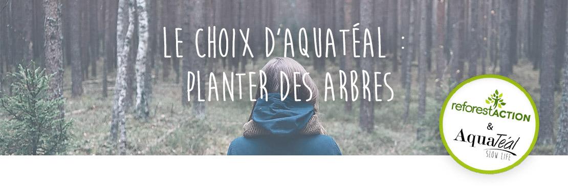 Planter des arbres.jpg