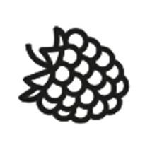 à base de fruits